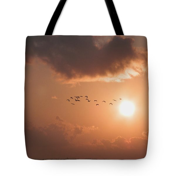 Dawn Flight Tote Bag