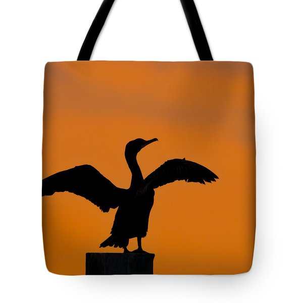 Dawn Of A Double-crested Cormorant  Tote Bag