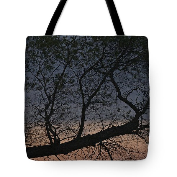 Tote Bag featuring the photograph Dawn by William Norton