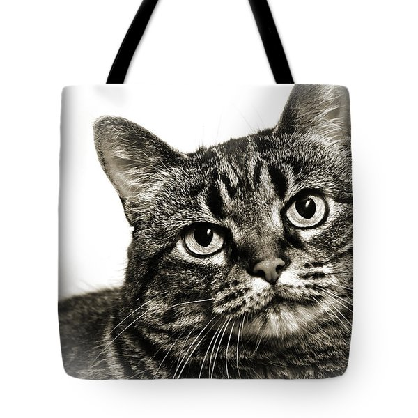 Day Dreamer Tote Bag by Andee Design
