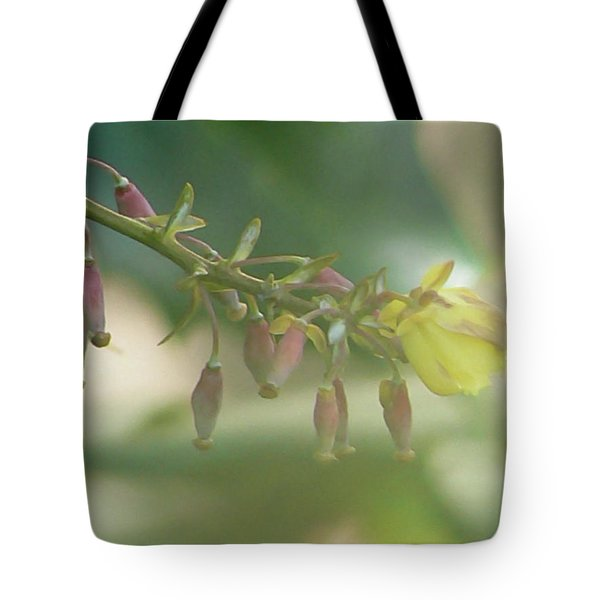 Daydreamer Tote Bag by Pamela Patch