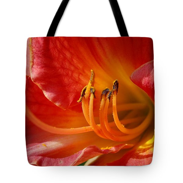 Daylilly Close Up Tote Bag by Randy J Heath