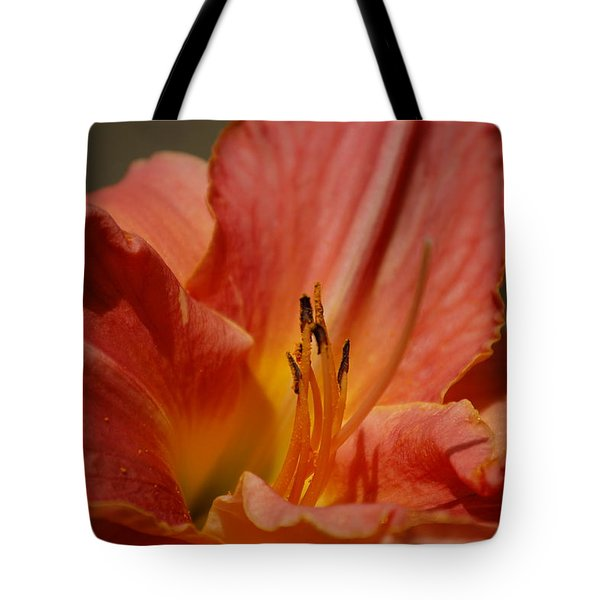 Daylilly Tote Bag by Randy J Heath