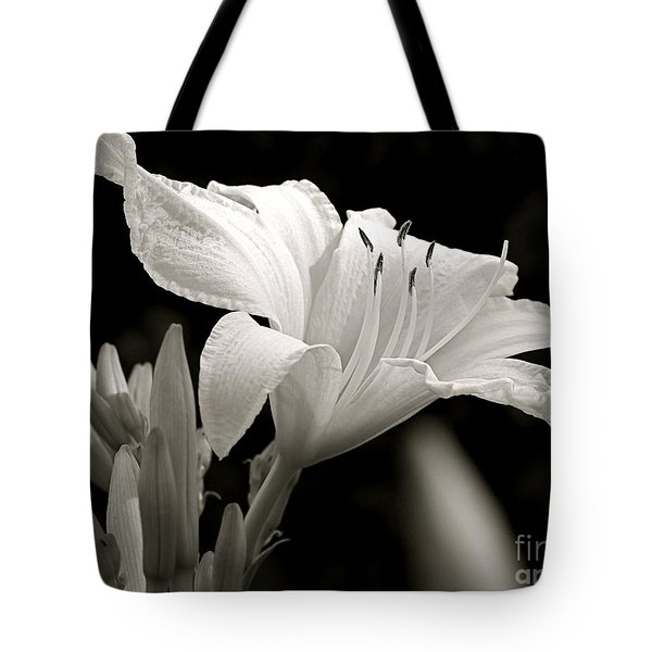 Daylily Study In Bw Iv Tote Bag