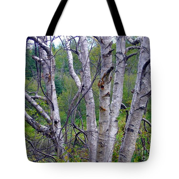 Tote Bag featuring the photograph Dead Birch Tree by Jim Sauchyn
