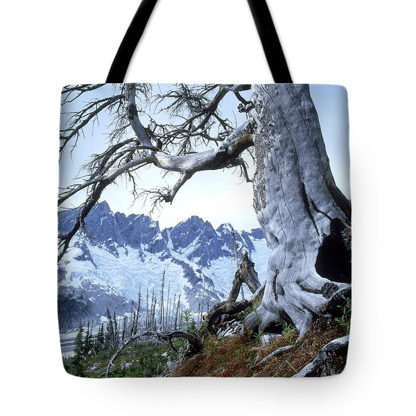 Dead Spruce In Old Forest Fire, Nabob Tote Bag by David Nunuk