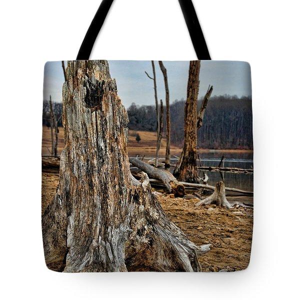 Dead Wood Tote Bag by Paul Ward