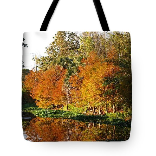 December Morn On Deerfield Creek Tote Bag