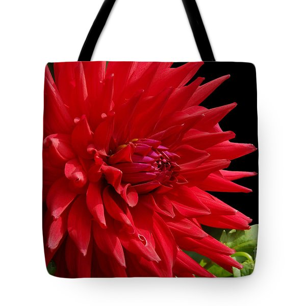 Decked Out Dahlia Tote Bag by Cindy Manero