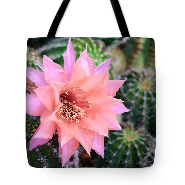 Decked Out In Pink Tote Bag by Diane Wood