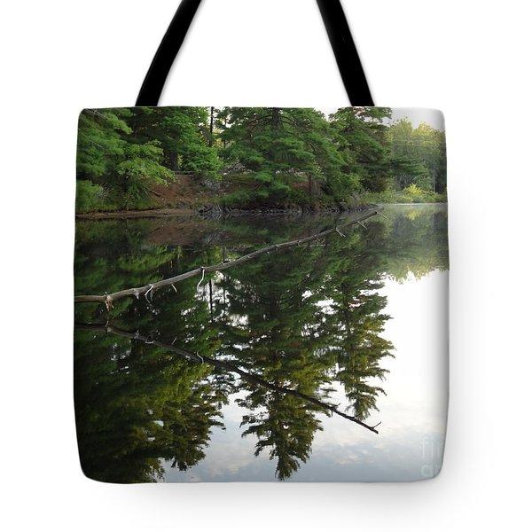 Deer River Reflection Tote Bag