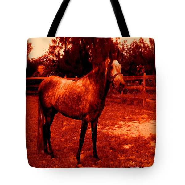 Tote Bag featuring the photograph Defiance by George Pedro