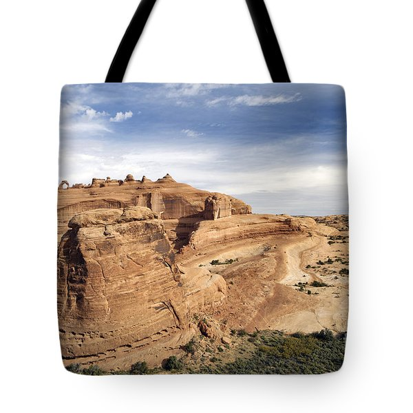 Delicate Arch Viewpoint - D004091 Tote Bag by Daniel Dempster