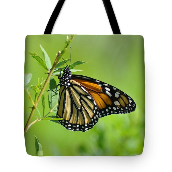 Delicate Wings Tote Bag by Bill Cannon