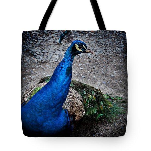 Demiurge Tote Bag