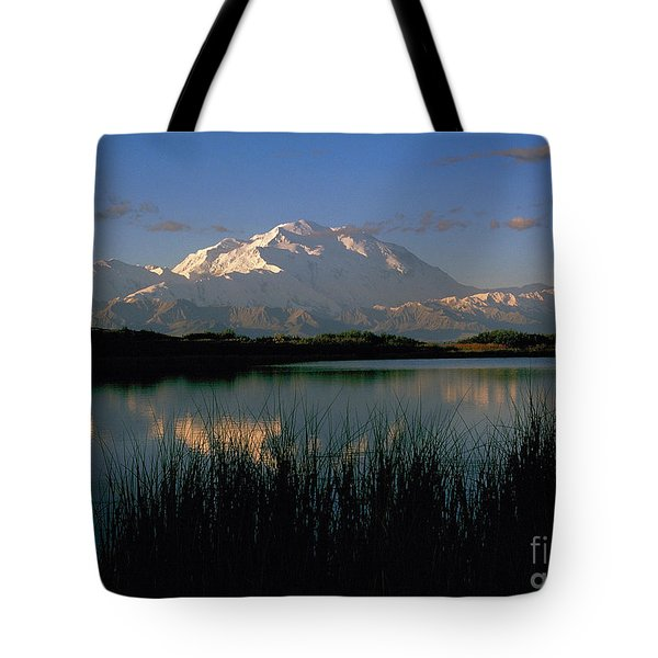 Tote Bag featuring the photograph Denali by Doug Herr