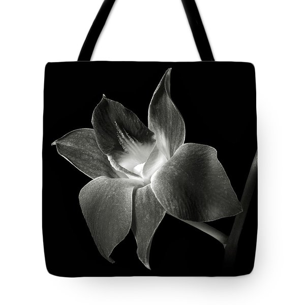 Dendrobium Orchid In Black And White Tote Bag