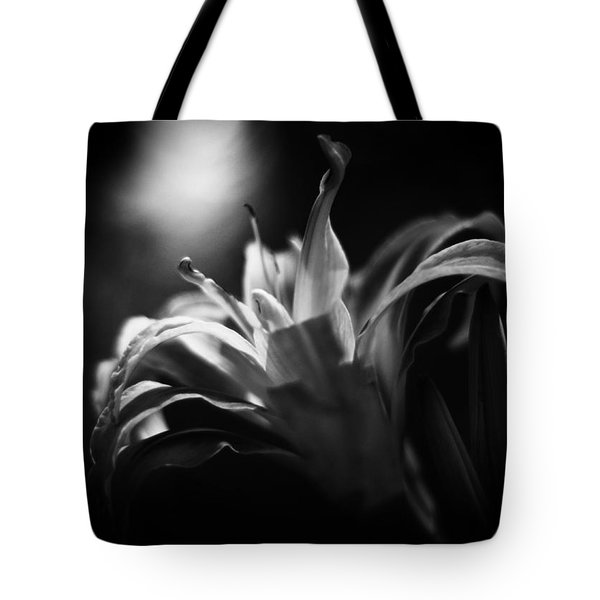 Descent Of The Spirit Tote Bag