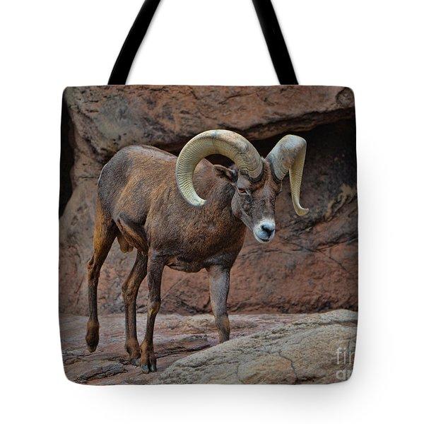 Desert Bighorn Sheep Ram I Tote Bag