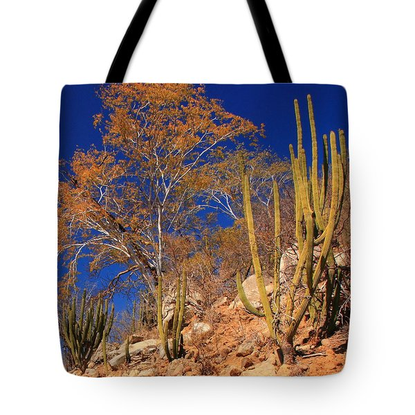 Desert Colors Tote Bag by Roupen  Baker