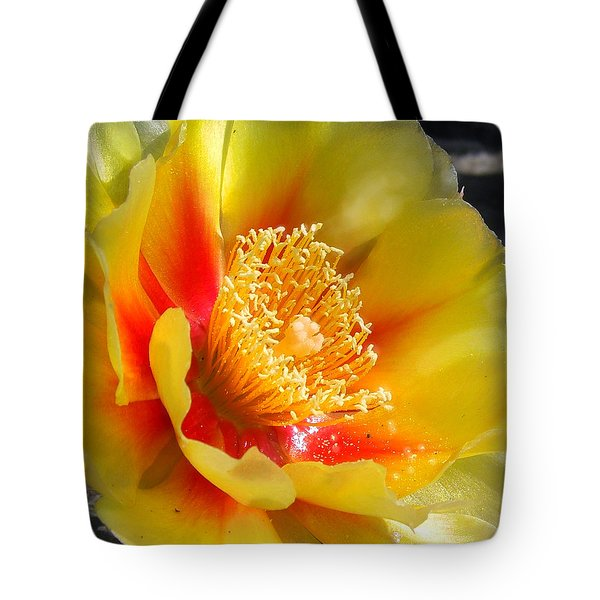 Desert Flower Tote Bag by Amy Williams