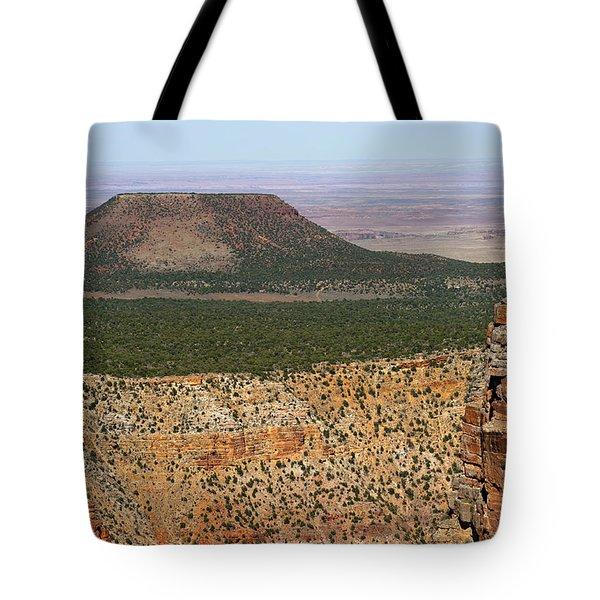 Desert Watch Tower View Tote Bag by Julie Niemela