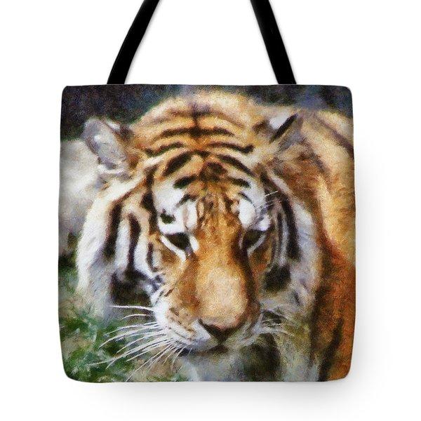 Detroit Tiger Tote Bag