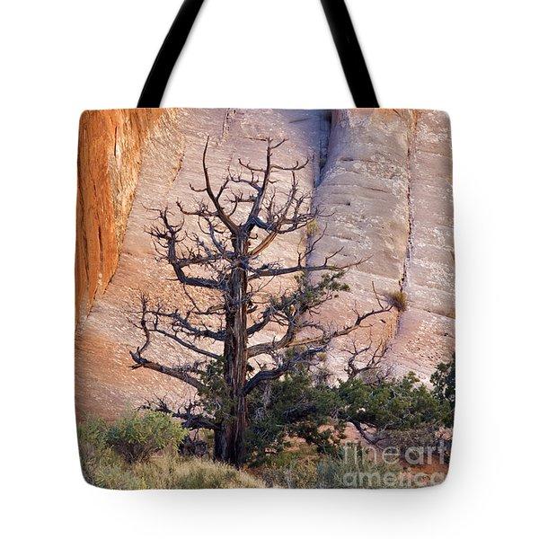 Devil's Garden - D003107 Tote Bag