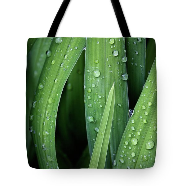 Dew To You Tote Bag by Empty Wall