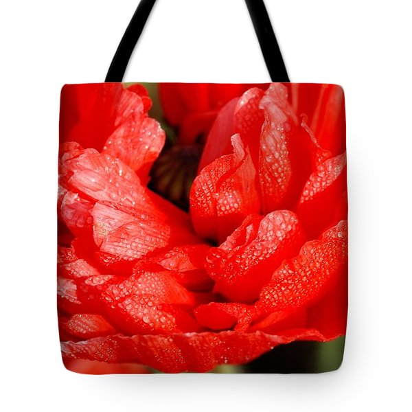 Tote Bag featuring the photograph Dewdrops by Fotosas Photography