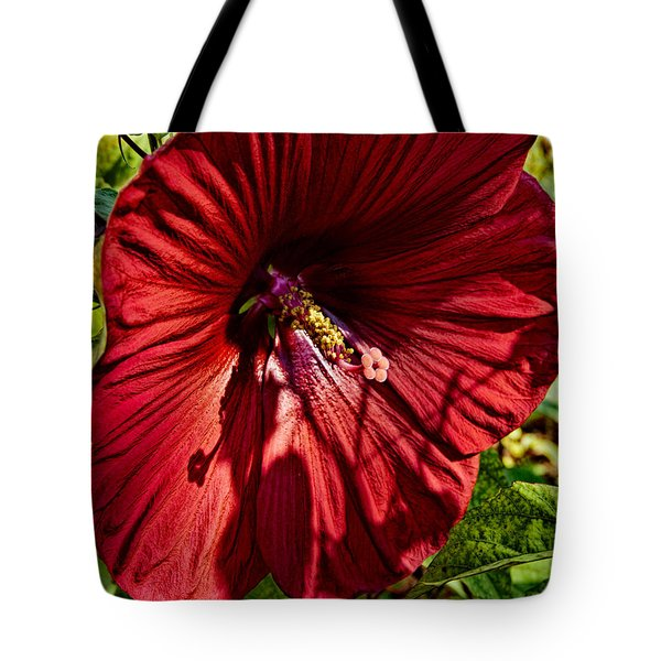 Dinner Plate Hibiscus Tote Bag by Christopher Holmes