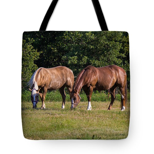 Dinning Together Tote Bag by Doug Long
