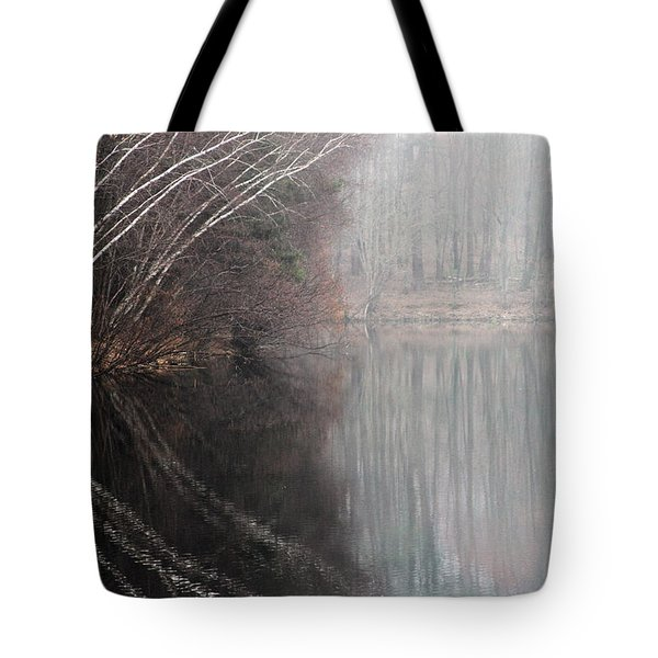 Divided By Nature Tote Bag by Karol Livote