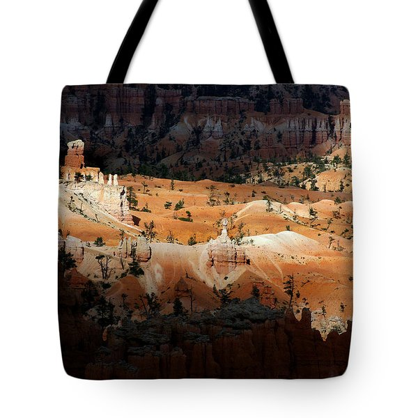 Tote Bag featuring the photograph Do You Bielive In Magic by Vicki Pelham