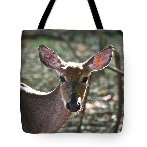 Doe Profile 9734 Tote Bag by Michael Peychich