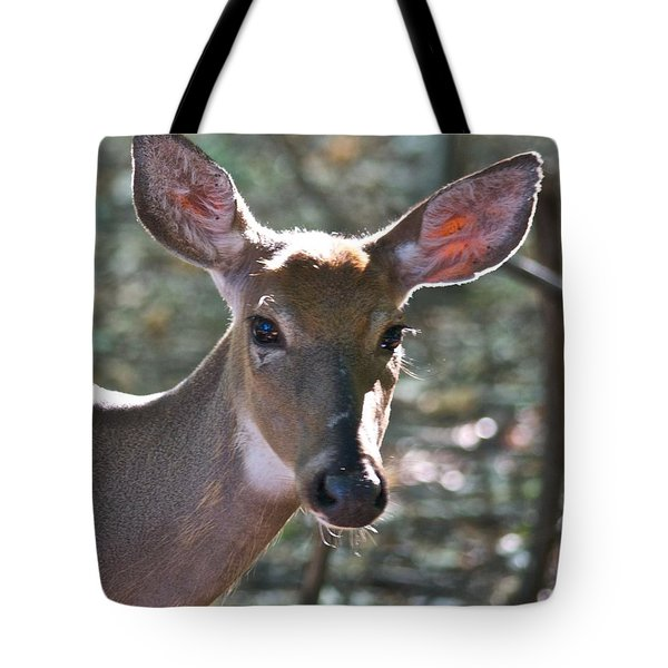 Doe Profile 9736 Tote Bag by Michael Peychich