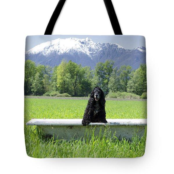 Dog In Bathtub Tote Bag