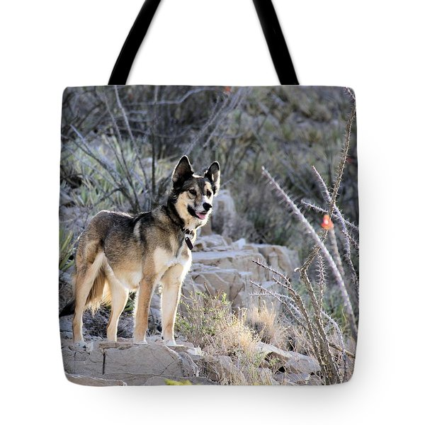 Dog In The Mountains Tote Bag by Marlo Horne