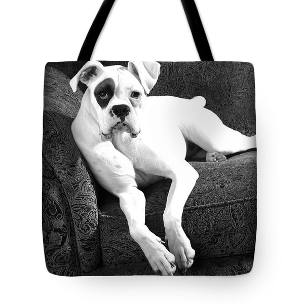 Dog On Couch Tote Bag by Sumit Mehndiratta