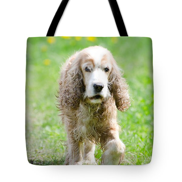 Dog On The Green Field Tote Bag by Mats Silvan