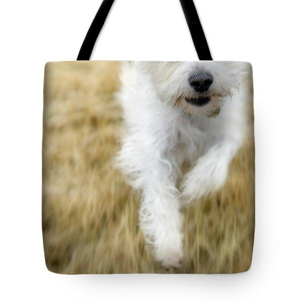 Dog Running Tote Bag by Darwin Wiggett