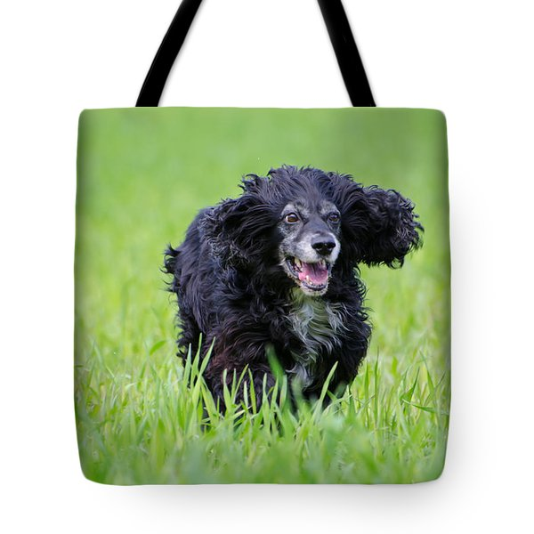 Dog Running On The Green Field Tote Bag