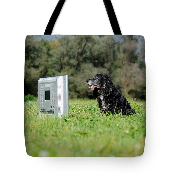 Dog Watching Tv Tote Bag