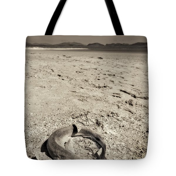 dogfish at Newborough Beach Tote Bag by Meirion Matthias