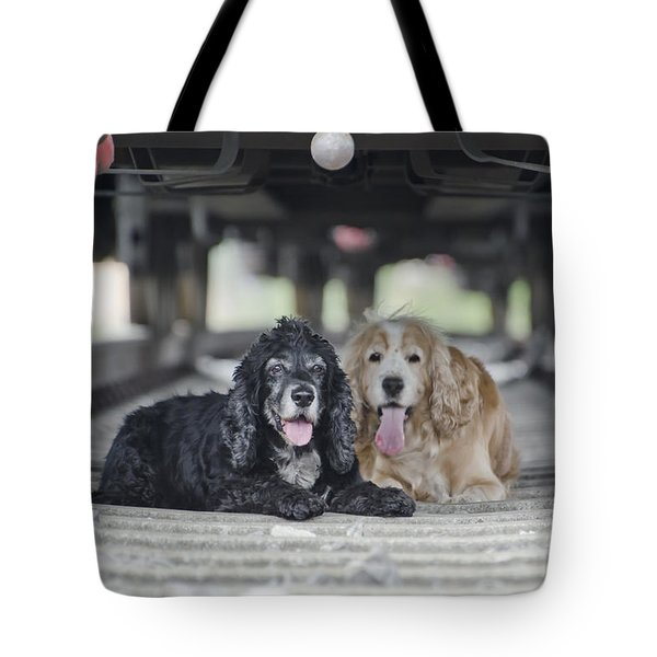 Dogs Lying Under A Train Wagon Tote Bag