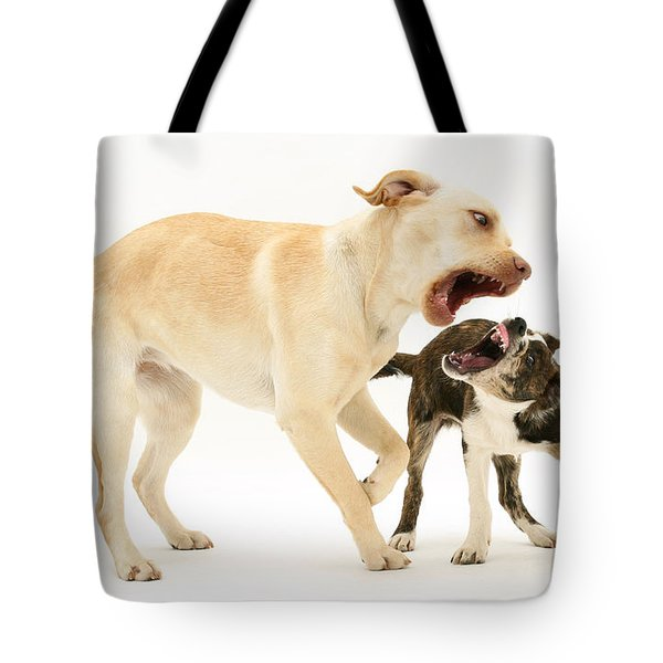 Dogs Playing Tote Bag by Mark Taylor