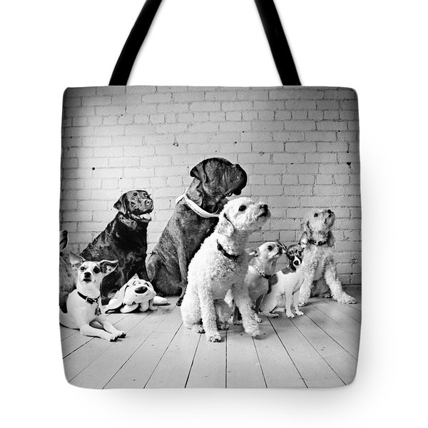 Dogs Watching At A Spot Tote Bag by Sumit Mehndiratta