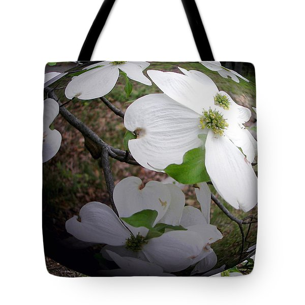 Dogwood Under Glass Tote Bag