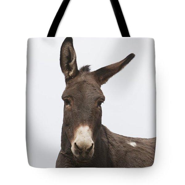 Donkey At The Hajigak Pass, Vardak Tote Bag by Peter Langer