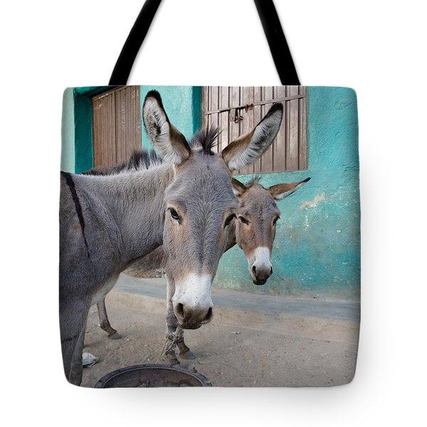 Donkeys, Harar, Ethiopia, Africa Tote Bag by David DuChemin